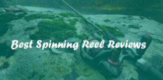 best spinning reel reviews